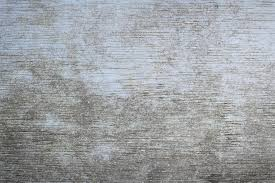Rustic Painted Wood Texture