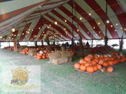 Miami Lakes Church Pumpkin Patch by The Pumpkin Patch Miami Florida Home The Pumpkin Patch Miami