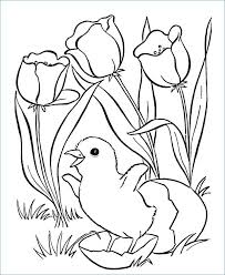 Disney Easter Coloring Pages Chicks Page Hatching Chick Egg