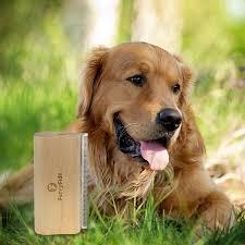 Non Shedding Dogs Large by Amazon Com Deshedding Brush By Furryfido Wooden Design