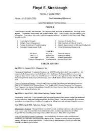 Cover Letter Examples For Resume Teenager