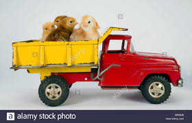 Baby Chicks Newborn Farm Chickens Ride Dump Truck Stock Photo ... Toys Hobbies Diecast Toy Vehicles Find State Products Pink Pig In Dump Truck Sculpture Joy Ride Rudkin Studio 1941 Em Dirt Diggers 2in1 Little Tikes John Deere Activity Tractor On Kids Toddler Farm Gift Sit R Us Pulls Toohot From Shelves After It Burst Into Cat Job Site Machines Ls Remote Control Vehicle Dumptruck Toysrus 1090 Keystone Ride Em Dump Truck Green Australia Recycled Plastic Earth Nest Tonka Mighty For Unboxing Review And Riding Also Big Trucks Youtube Or 40 Ton