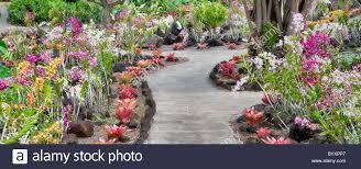 Orchids and path at Moir Gardens Klahuna Plantation Resort Kauai