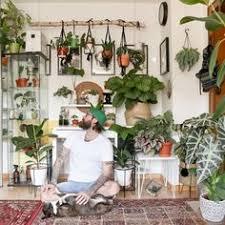 230 jungle wohnen mit pflanzen ideen in 2021