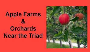 Corn Maze Pumpkin Patch Winston Salem Nc by Triad Apple Farms U0026 Orchards Triad Moms On Main Greensboro