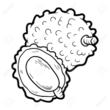 Coloring Book For Children Fruits And Vegetables Lychee Stock Vector