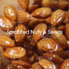 Sprouted Pumpkin Seeds Phytic Acid by Sprouted Nuts And Seeds Realfoodtoronto Com Our Blog