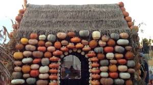 Cal Poly Pumpkin Patch 2016 by Pumpkin House At Mr Bones Pumpkin Patch In Culver City Ca Youtube