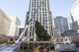 Rockefeller Christmas Tree Lighting 2017 by Rockefeller Christmas Tree Lands In New York City Ny Daily News