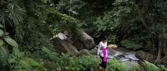 100 Ubud Hanging Gardens Luxury Resorts Wellness Cafe Resort Spa Areas Bali