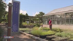 100 Ladybird Food Truck Fall Native Plant Sale At Lady Bird Johnson Wildflower Center