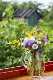 Aspirin For Christmas Tree Life by Preservatives For Cut Flowers U2013 Tips For Feeding Fresh Cut Flowers