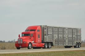 Hauling | 101 Livestock Auction Trucking 101 Album On Imgur Daphne Services Home Facebook Becoming An Owner Operator Cdl Mile Markers Potential Drivers Montgomery Custom Truck Sleeper All Trucks And Pinterest Rigs Bartels Truck Line Inc Since 1947 Rm Mrsinnizter Datrucker Ctortrailer Alley Dock Backing Mistakes Jl Cutting Edge Designs Driving Jobs At Transport Company About Transpro Intermodal