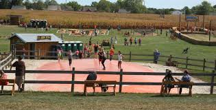 Great Pumpkin Patch Frederick Md by Fun Fall Festivals In Frederick