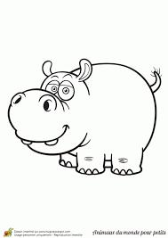 Coloriage De Vrais Animaux à Imprimer Monde Des Petits Coloriages à