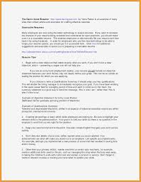 Career Summary Resume Awesome Overview Selo L Ink