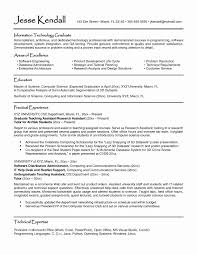 Information Technology Resume Examples Inspirational Luxury Professional Skills