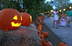Conners Pumpkin Patch Jacksonville Fl by Halloween Attractions The Hoots And Horrors