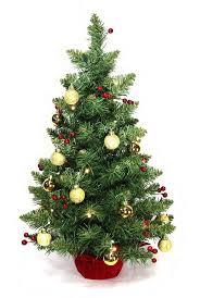 Pre Lit Flocked Alaskan Christmas Tree by Tabletop Snowing Christmas Tree The Green Head Pre Lit Impressive