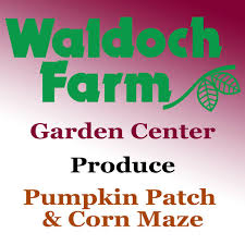 Halloween Attractions In Mn by Find Corn Mazes In Minnesota Longest And Best Corn Mazes And