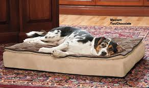 dog beds drs foster and smith blanket top luxury sleeper