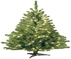 Slimline Christmas Trees Artificial by Pencil Christmas Trees Best Images Collections Hd For Gadget