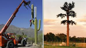 25 Cell Phone Towers Disguised to Look Like Something Else 5 Is Master Disguise