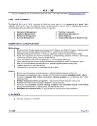 Sample Resume Summaryresume Summary Examples With No Experience Intended For Professional