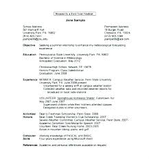 Resume Template First Job My Samples