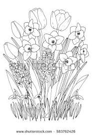 Spring Garden Flowers Coloring Page Hand Stock Vector 566641771