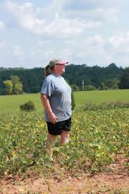 Pumpkin Patch Farms Raleigh Nc by Central Virginia Ag Spotlight Connecting Communities To Agriculture