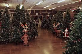 Christmas Tree Shop Near Albany Ny by Christmas Trees Store Locations Christmas Lights Decoration