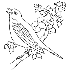 Coloring Page Bird Feeder In