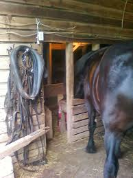 Amish Horses: Harness Shop Amish Horses April 2016 For Sale Featured Listings Kalona Homes For Property Search In Single Familyacreage Sale Iowa 20173679 Tours Chamber September 2014 Ia Horse Auction Pictures Of Amana Colonies Day Trip To Girl On The Go