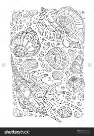 Seashell Pattern Art Zentangle Coloring Page For Adults