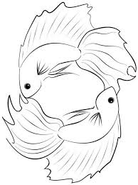 Betta Fish Coloring Pages 3