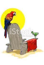 panama jack parrot tropical flowers beach towel 30 x 60 fast