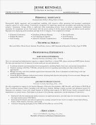 Small Business Owner Resume New 19 Beautiful Sample