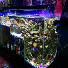 Pin By GloFish® On Aquarium Inspiration | Pinterest | Aquariums ... Home Design Aquascaping Aquarium Designs Aquascape Simple And Effective Guide On Reef Aquascaping News Reef Builders Pin By Dwells Saltwater Tank Pinterest Aquariums Quick Update New Aquascape Of The 120 Youtube Large Custom Living Coral Nyc Live Rock Set Up Idea Fish For How To A Aquarium New 30g Cube General Discussion Nanoreefcom Rockscape Drill Cement Your Gmacreef Minimalist 2reef Forum