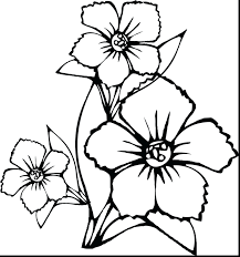Superb Draw Flower Coloring Page Pages Flowers Roses Preschool Spring To Print Printable Full Size