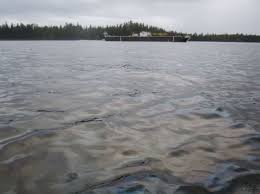 Tug Boat Sinks by Clam Beds At Risk After Sinking Tug Spills Fuel Near Bella Bella