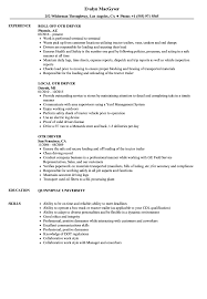 Download OTR Driver Resume Sample As Image File