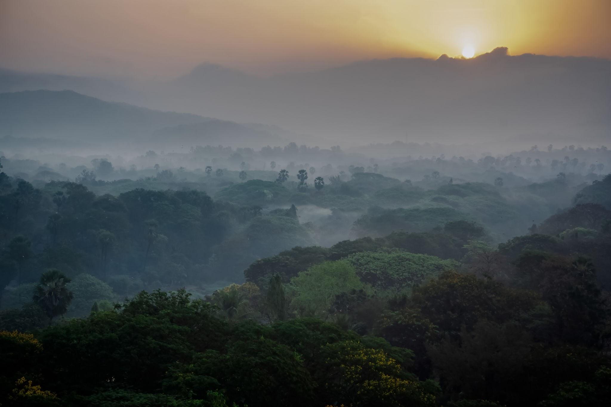 الاماكن السياحية في مومباي حديقة سانجاي غاندي الوطنية