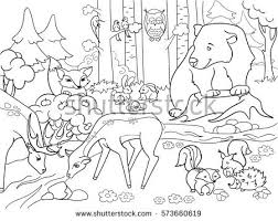 Forest Landscape With Animals Coloring Book For Adults Vector Illustration Black And White Lines Glade