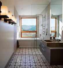 Narrow Bathroom Ideas Pictures by Basement Bathroom Ideas With Low Budget For Narrow Space