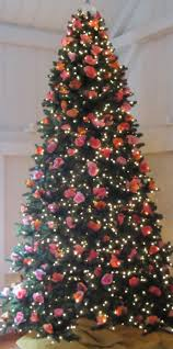 Mona Shores Singing Christmas Tree 2017 by The Official Tomie Depaola Blog December 2012