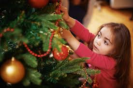 Christmas Tree Has Aphids by Look Out For Bugs In Your Christmas Tree Perseverance Pest Control