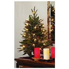 Bethlehem Lights Christmas Trees by Amazon Com Gki Bethlehem Lighting 2 Foot Green River Spruce