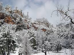 Usda Christmas Tree Permits Colorado by Where To See Snow In Arizona During Winter 2016 Phoenix New Times