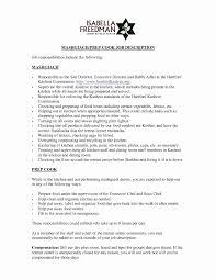 Resume Layout Samples Beautiful Examples Unique 17 Rh Dragandabic Com Sales Representative Sample Resumes